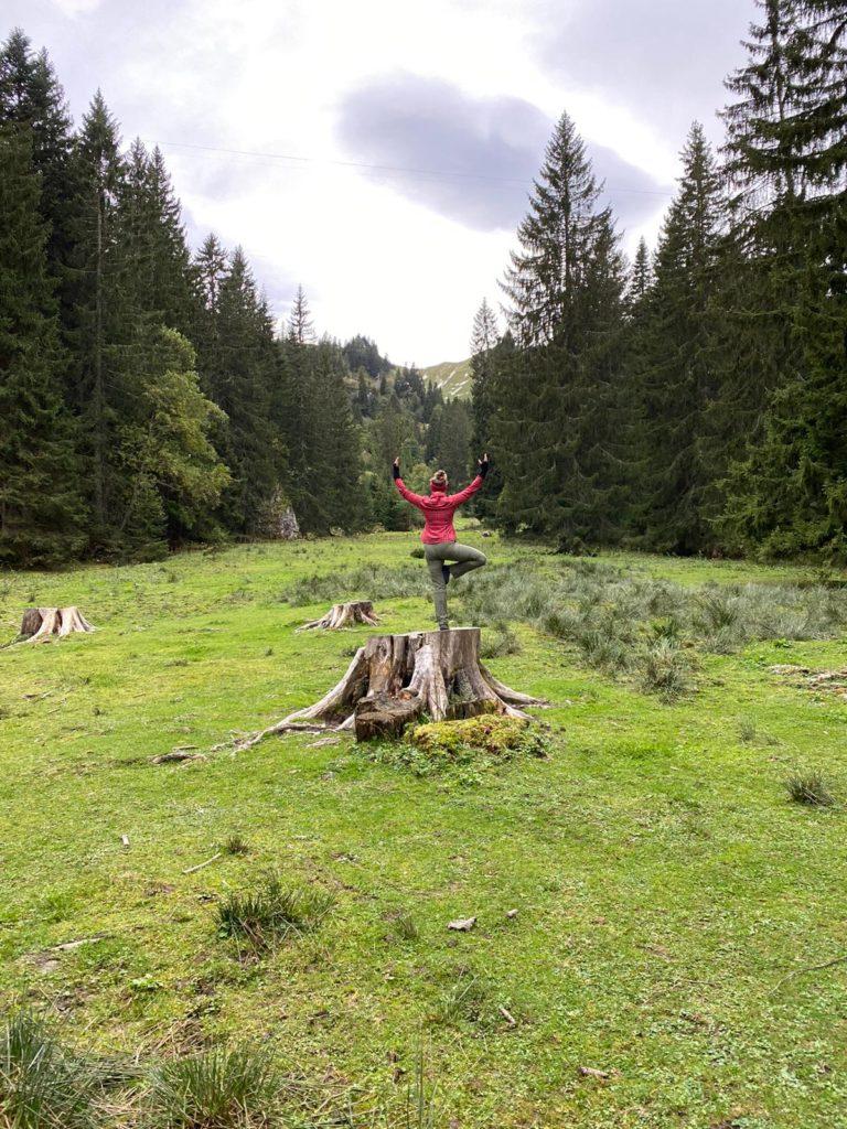 LIVIN YOGA Baum